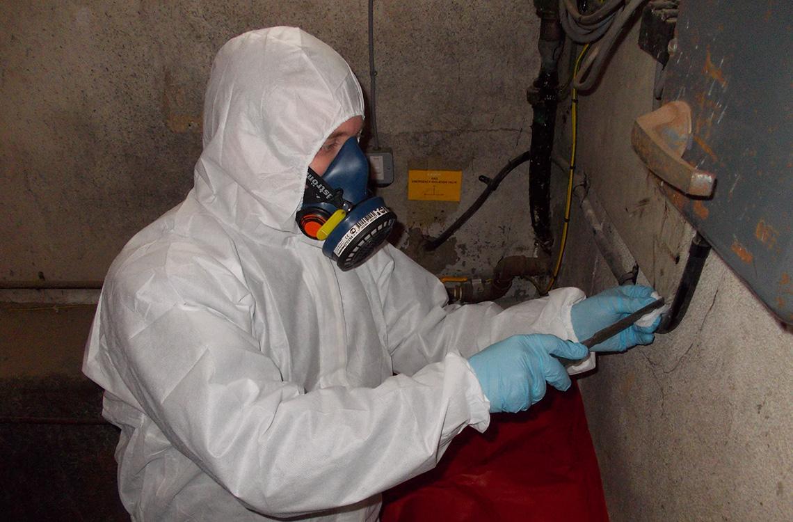 Asbestos intrusive survey